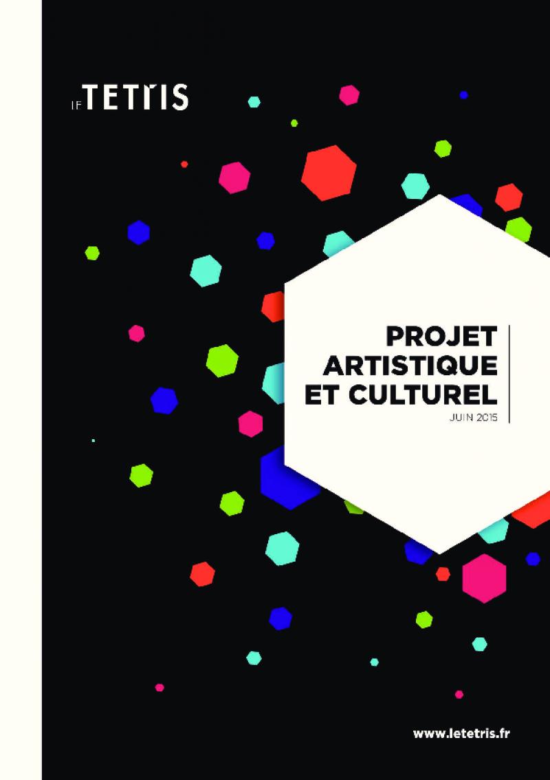 PROJET ARTISTIQUE ET CULTUREL 2015